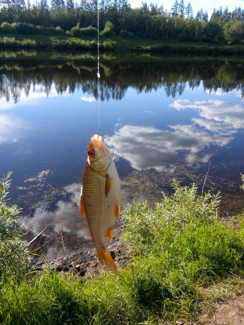 Рыбалка на нижней тунгуски