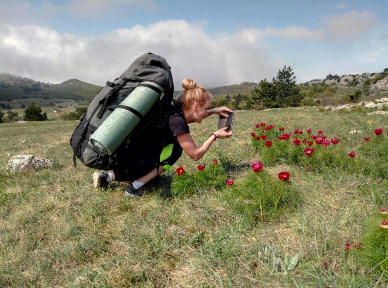 Фотосъемка цветов в походе