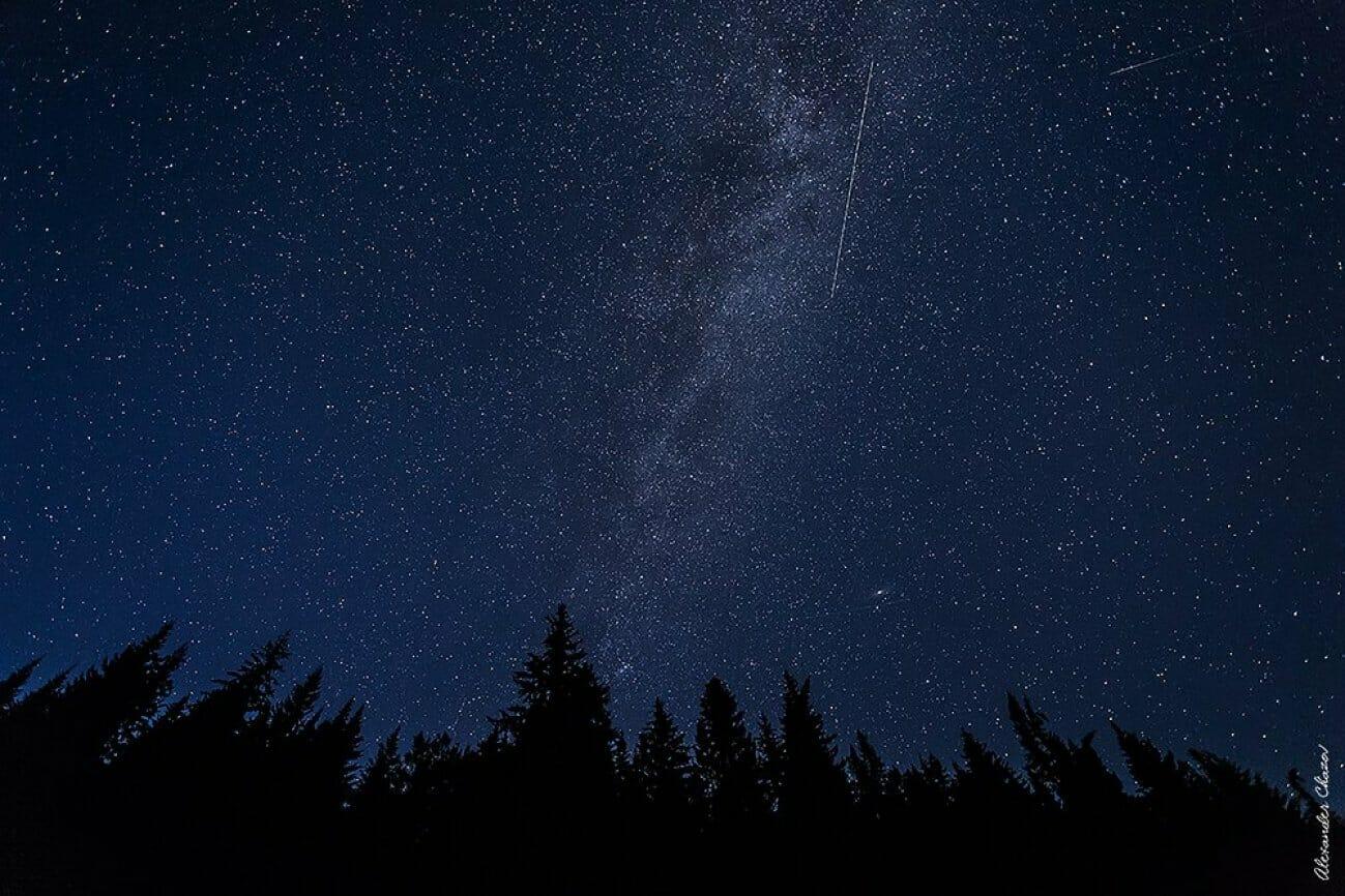 Звездное небо над лесом
