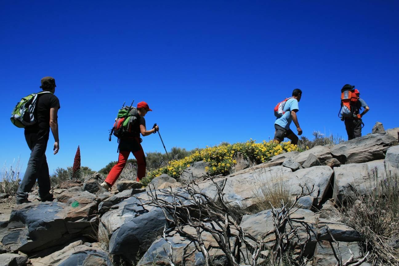 Путешественники покоряют гору с рюкзаками и треккинговыми палками