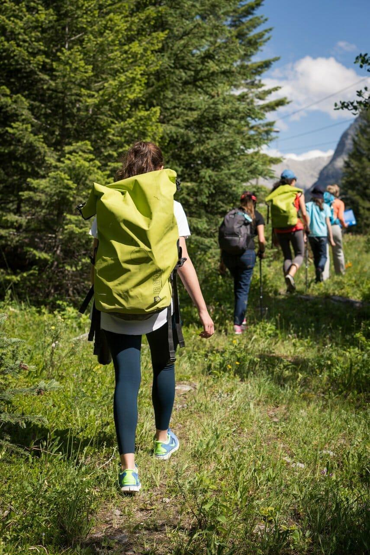 Поход по лесу с рюкзаками