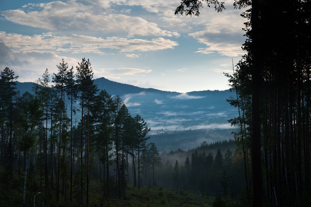 Туманная долина в горах