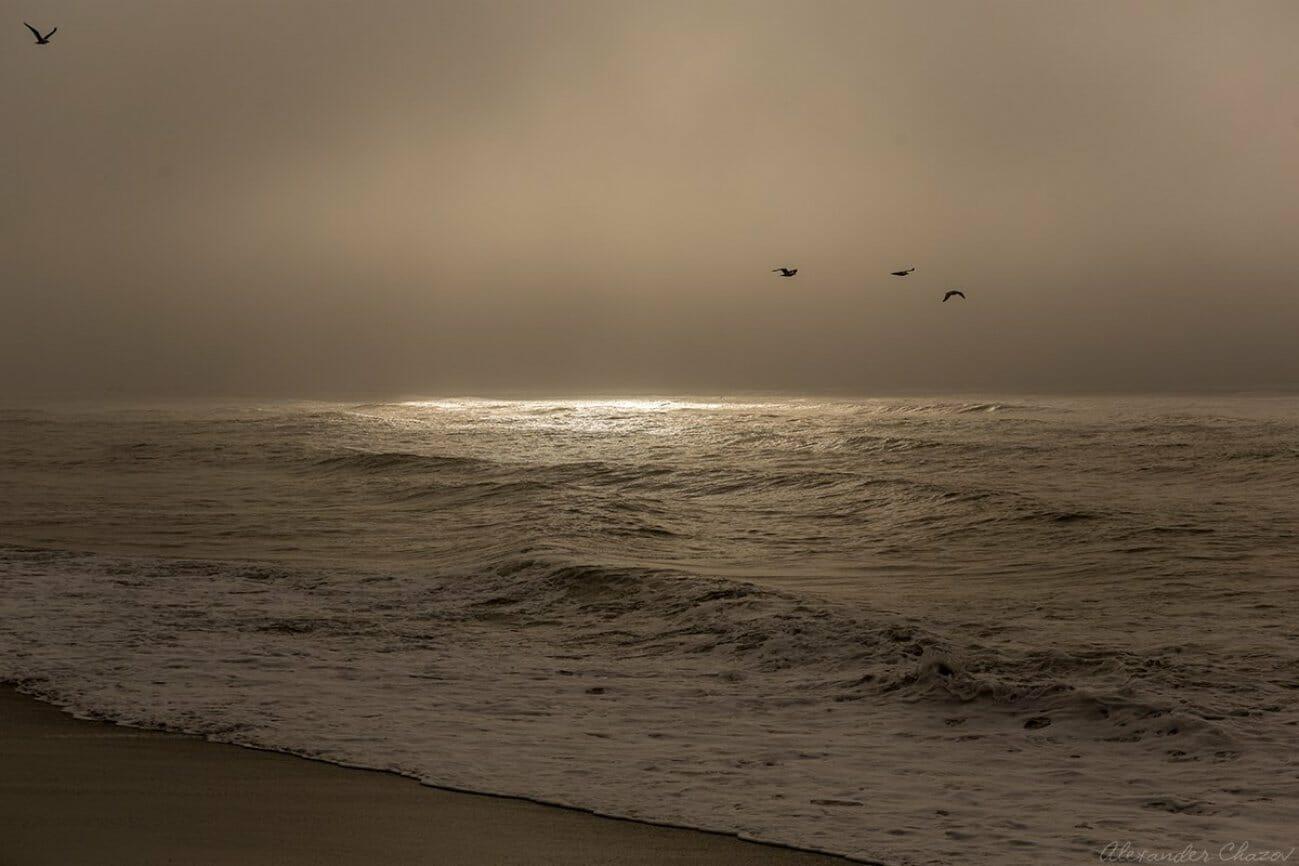 Закат над морем на пляжу и пролетающими птицами