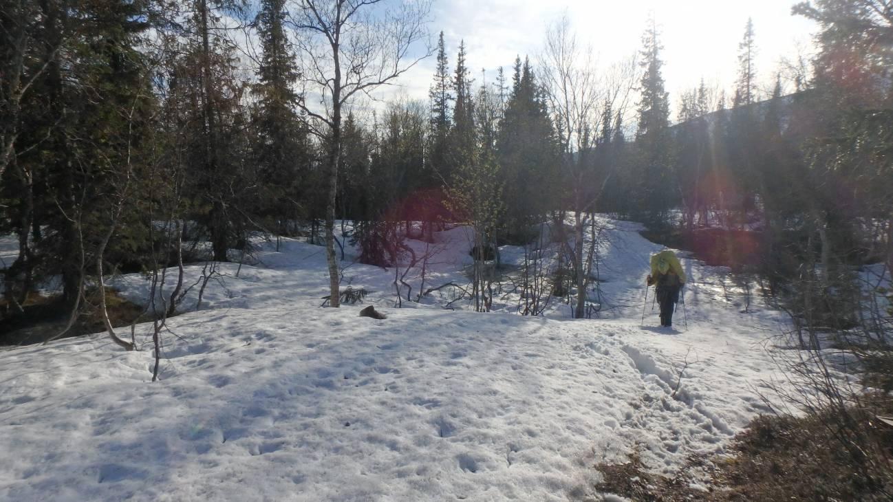 Девушка путешествует по снегу зимой