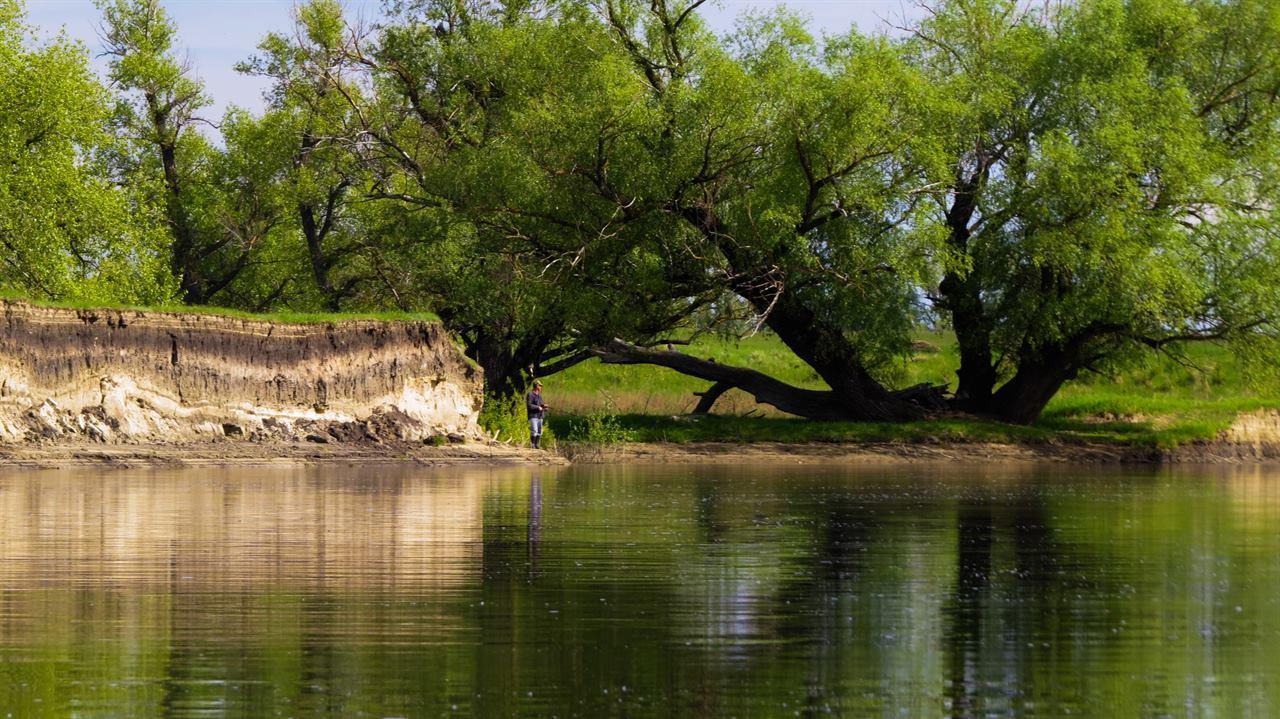 Рыбак на берегу речки