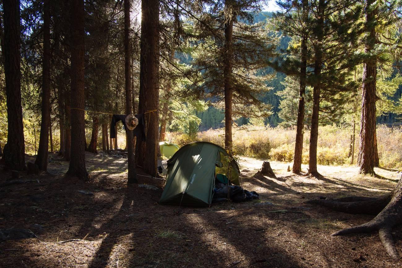 Туристическая палатка в лесу