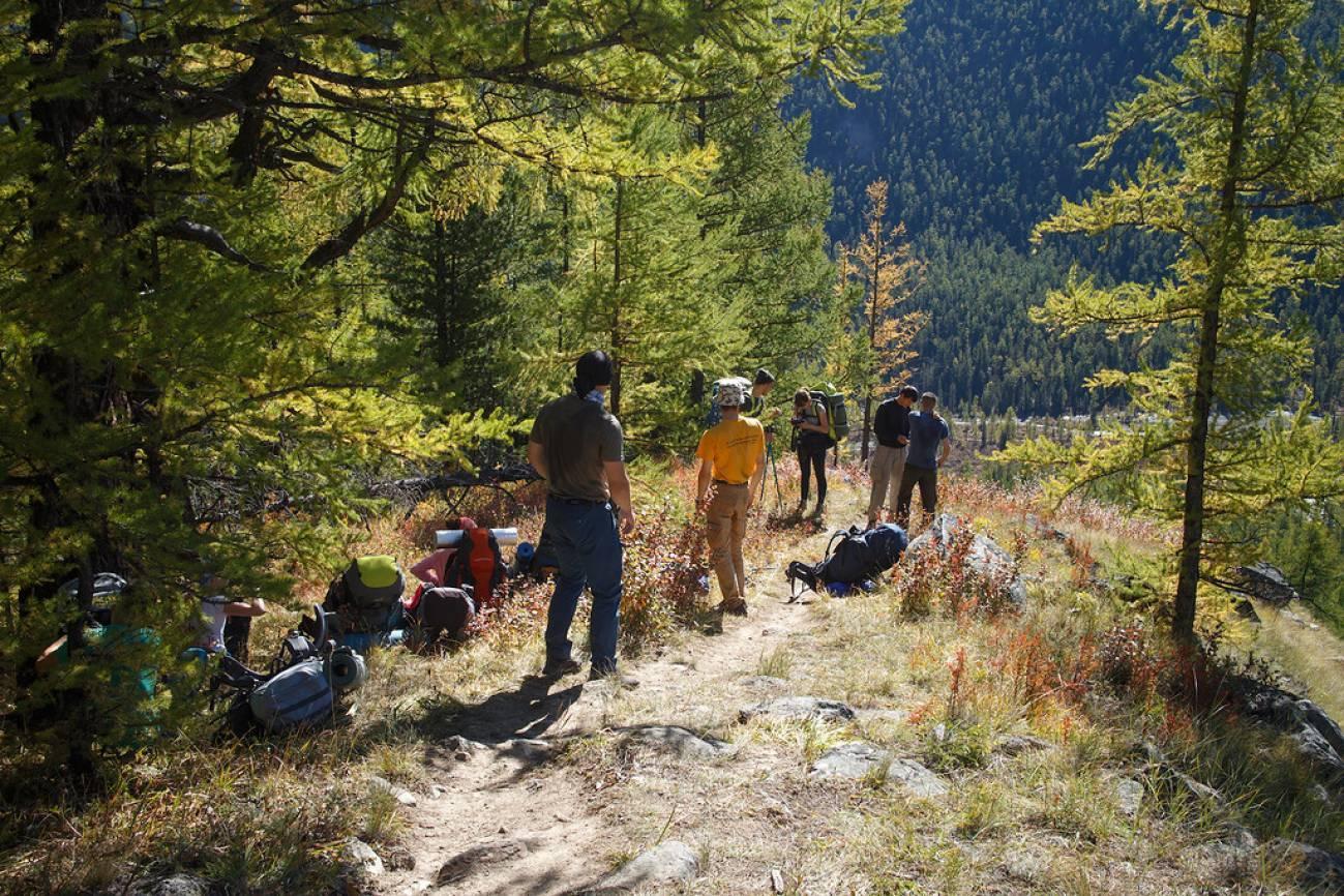Туристы отдыхают в лесу после подъема