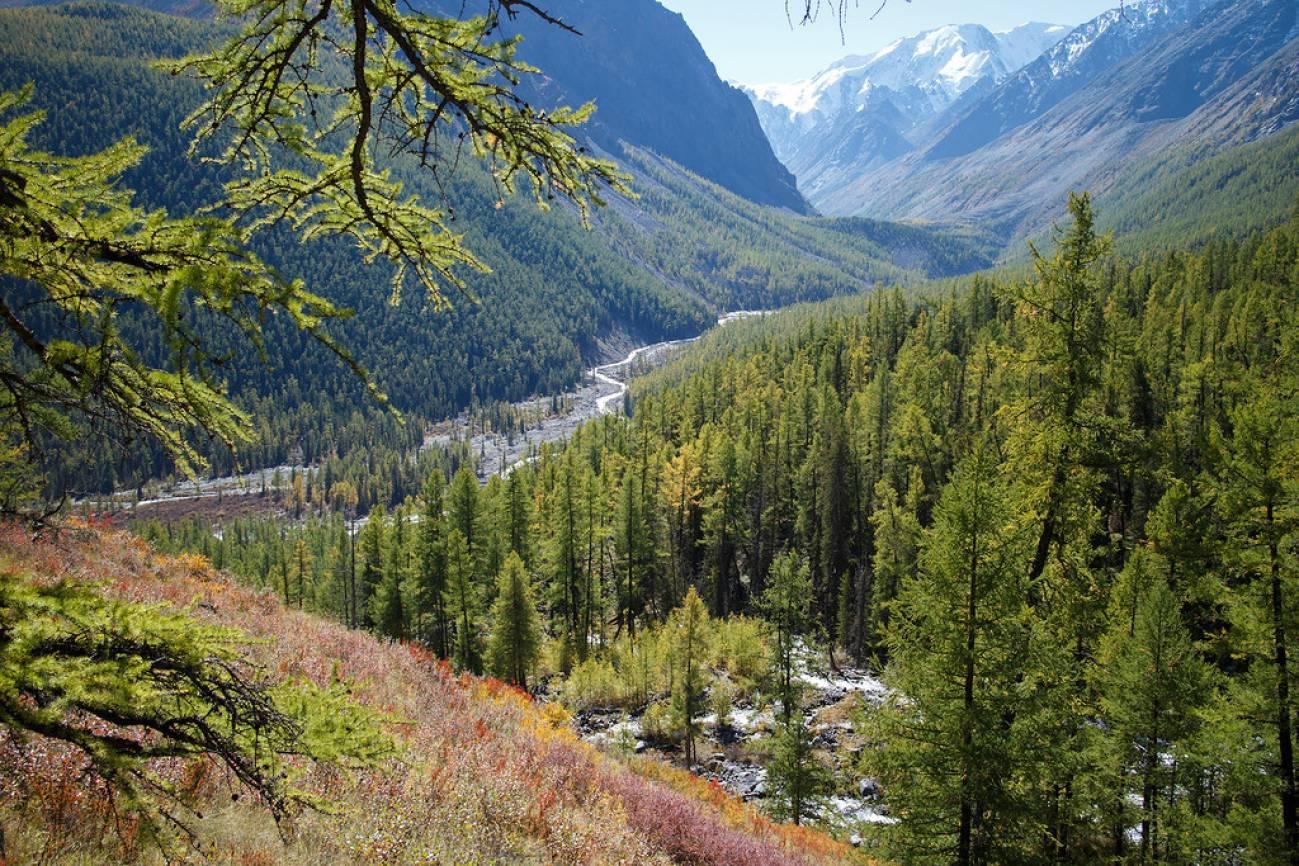 Высоко в горах видна долина и река