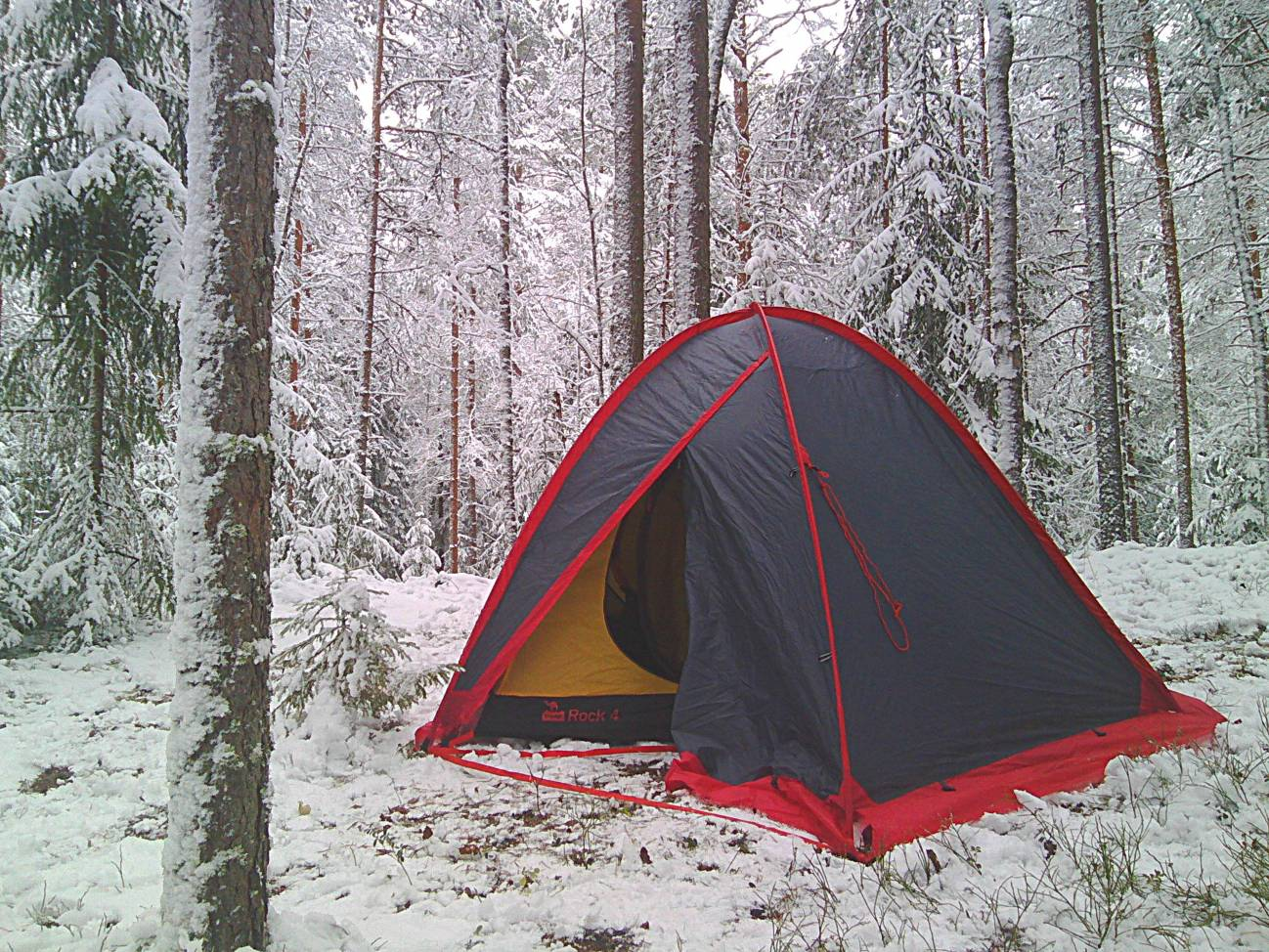 Туристическая палатка в лесу на снегу