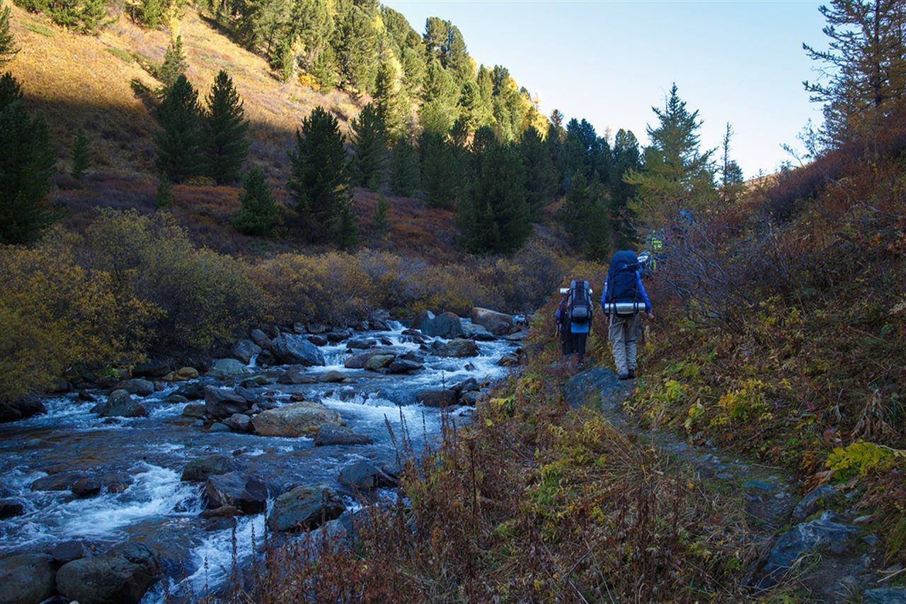 Туристы идут вдоль реки на Алтае