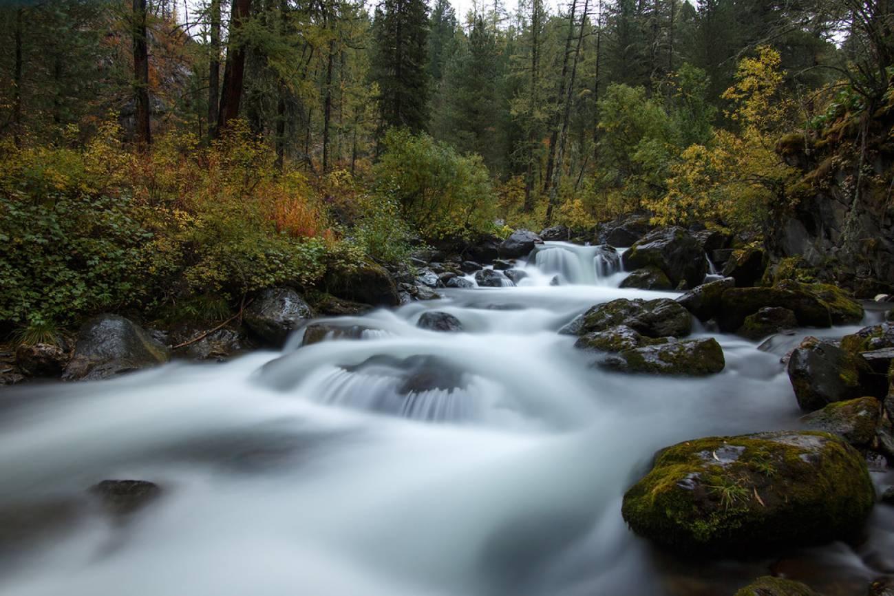 Горная бурная река и каменистые порогои