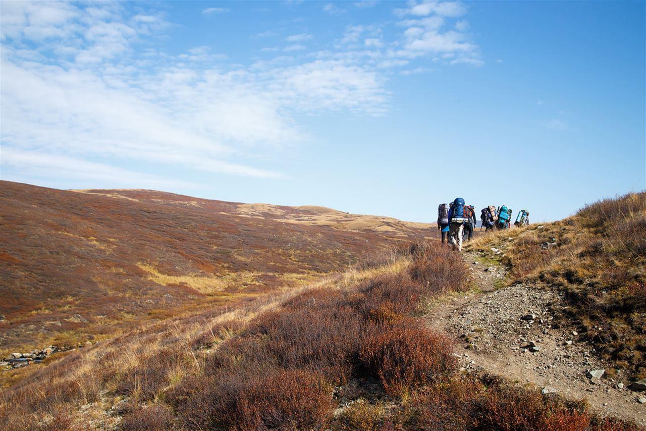 Туристы на величественных долинах Алтая