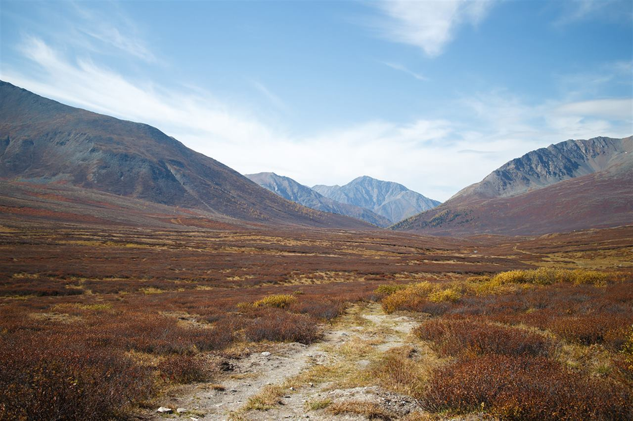 Горные равнины Алтая