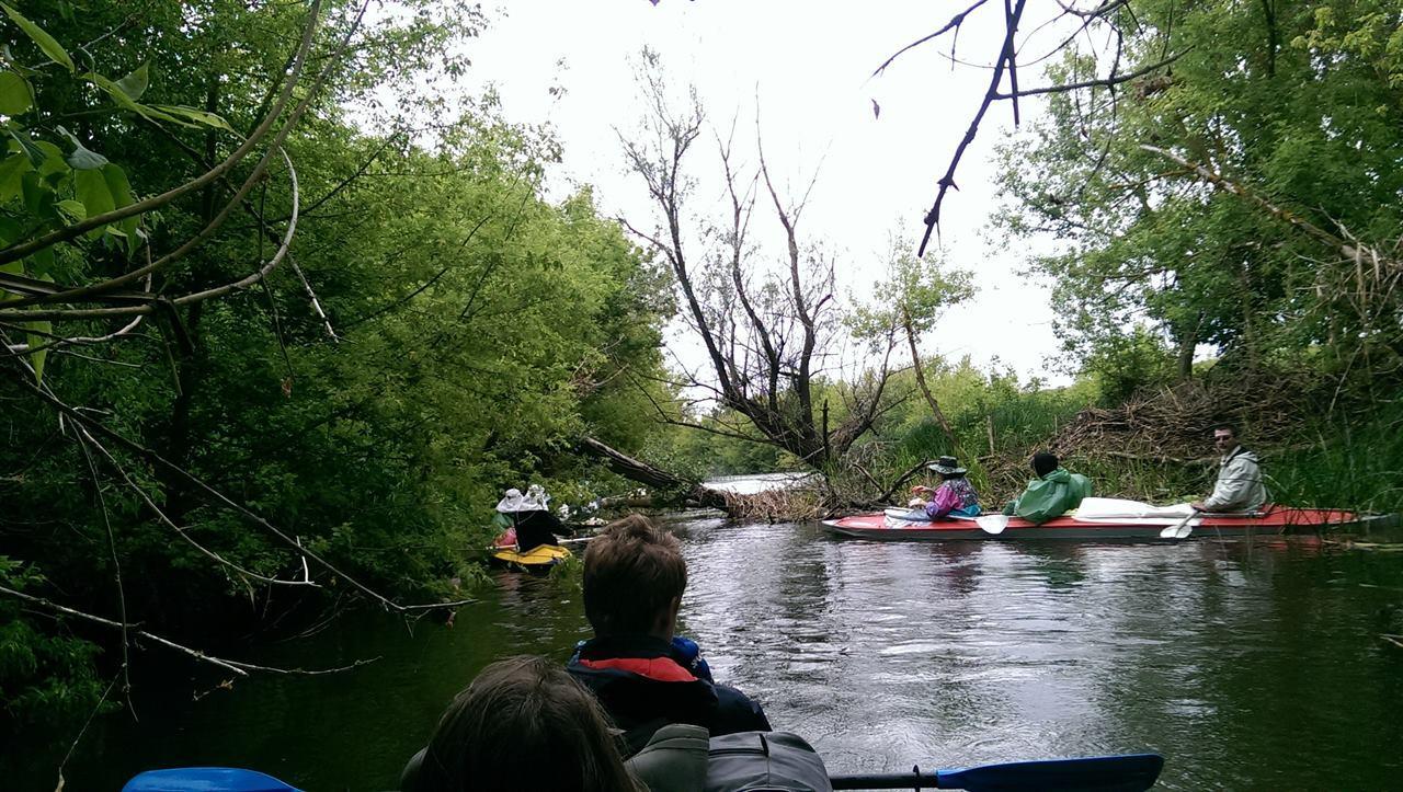 Группа туристов в лодках на сплаве