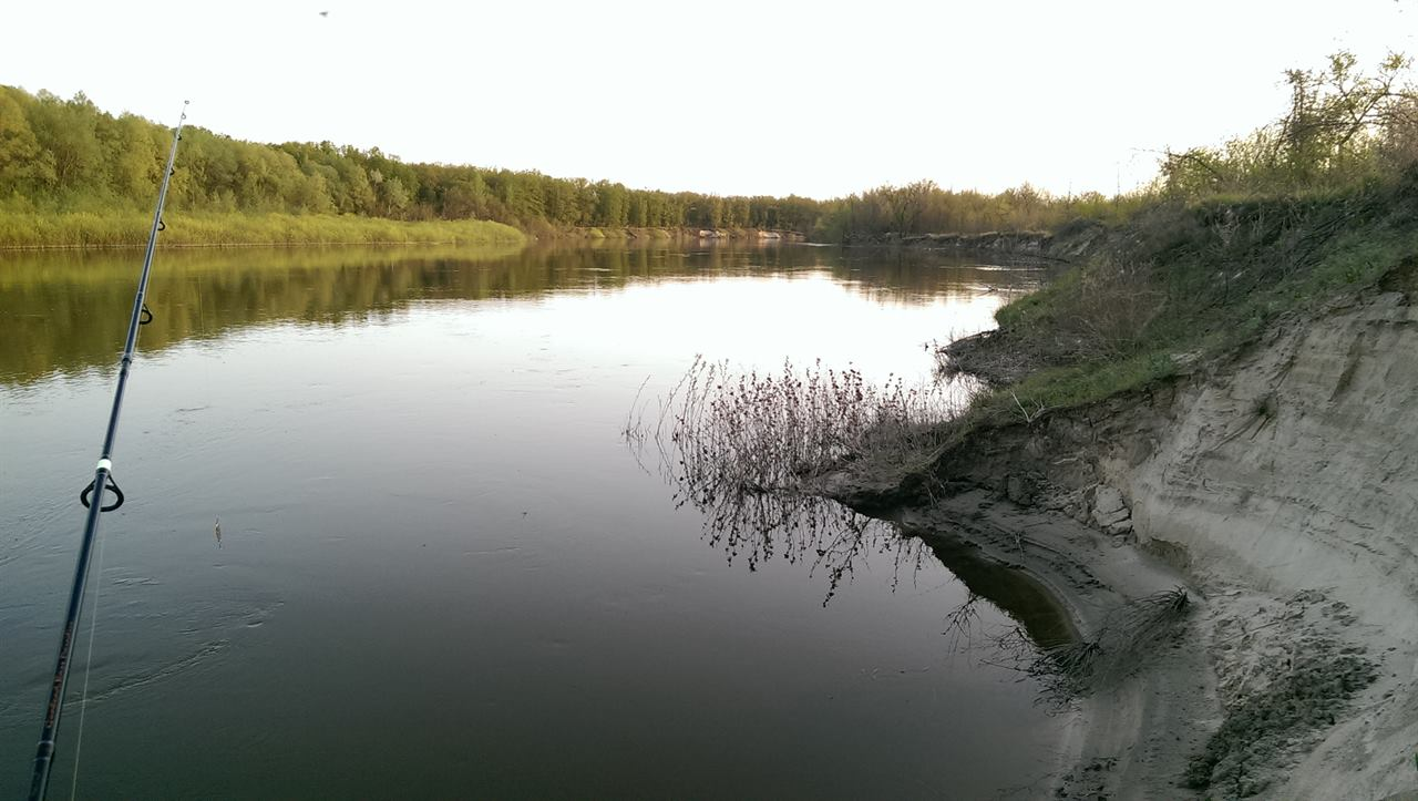 Рыбалка не речке летом
