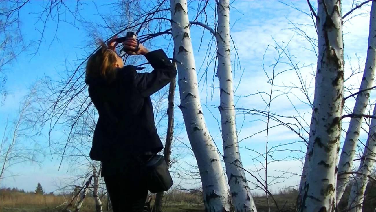 Съемка путешествия на видеокамеру для видеоблога