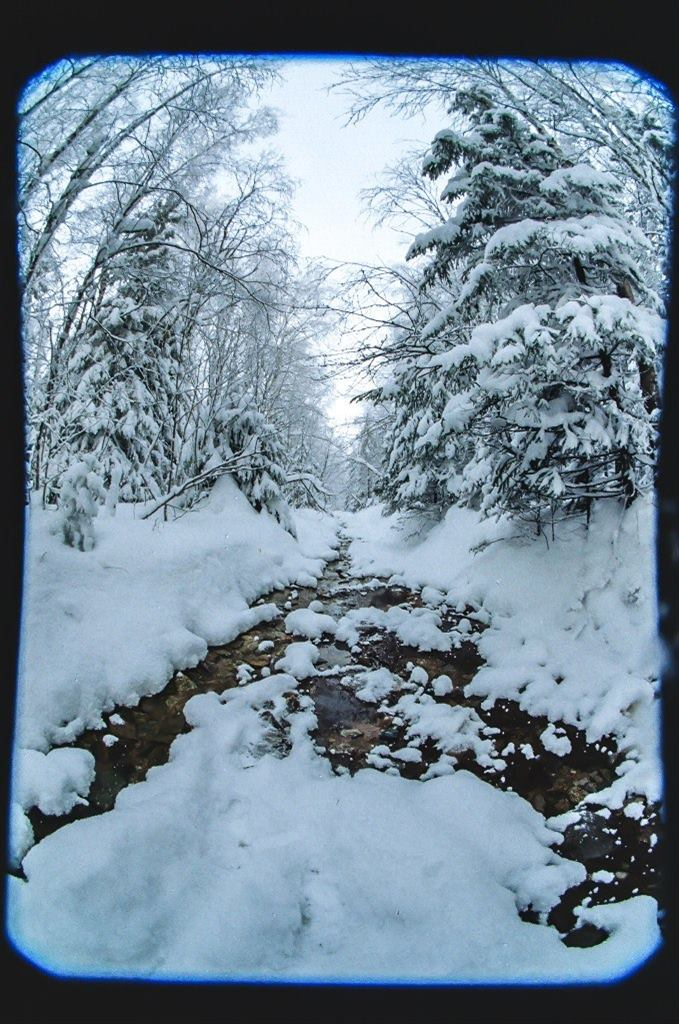 Не замерзший зимний ручей в тайге