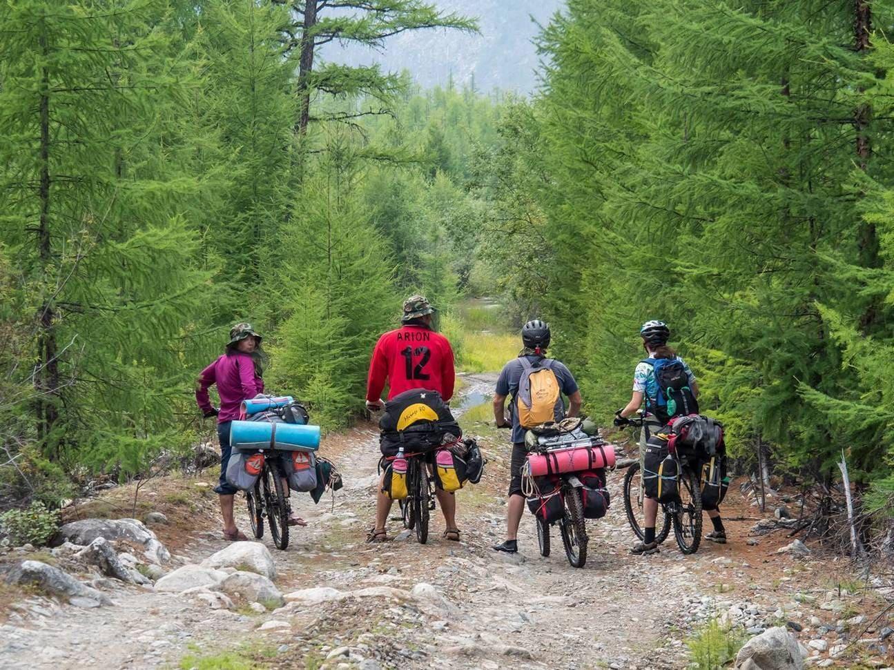 Путешественники в лесу на велосипедах