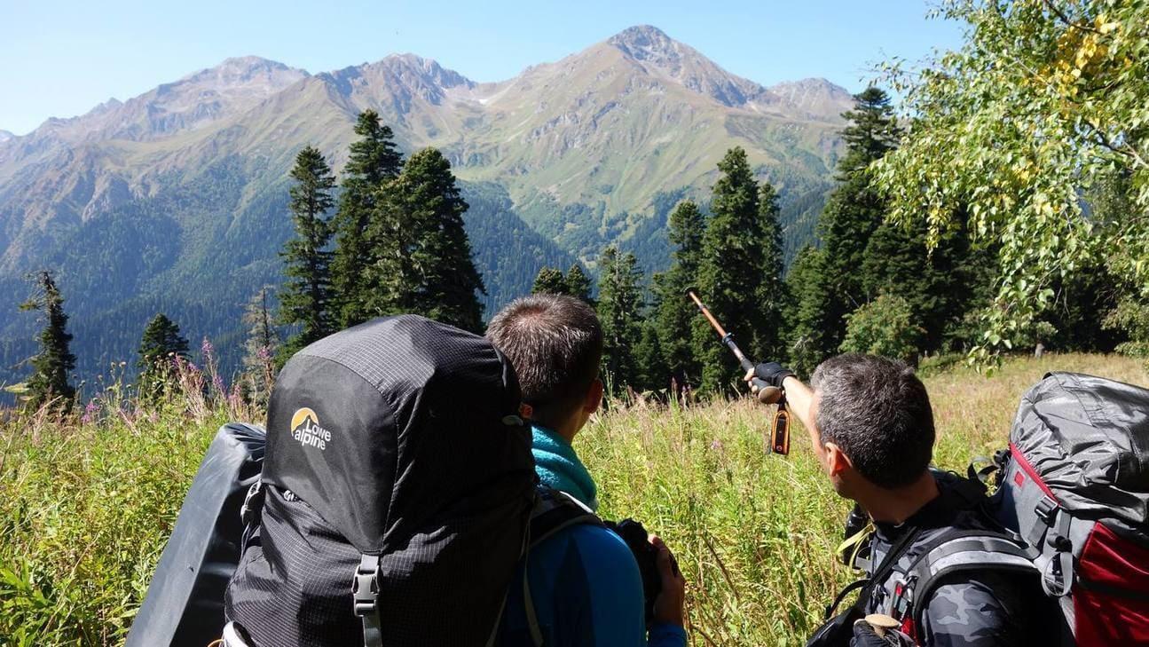 Туристы планируют маршрут