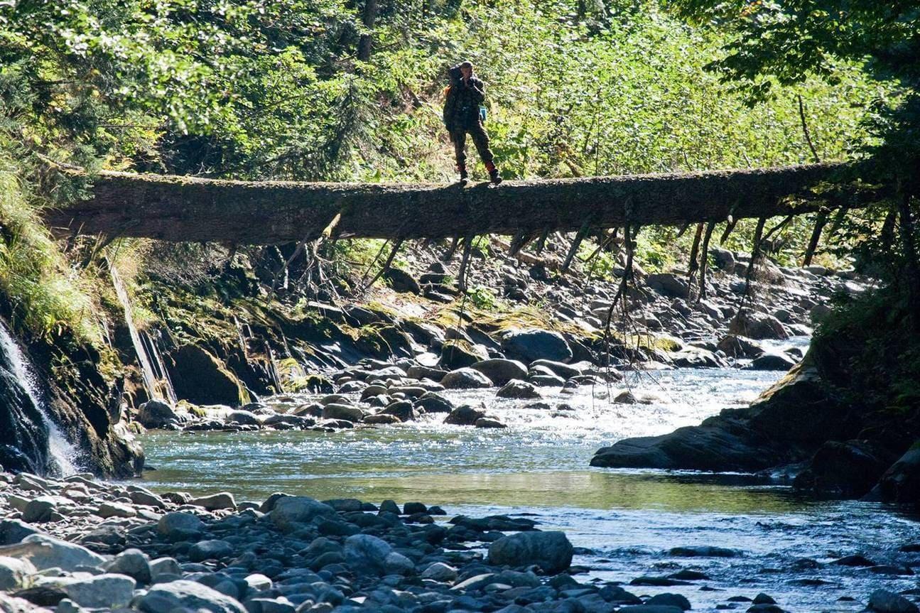 Турист в лесу на бревне над речкой