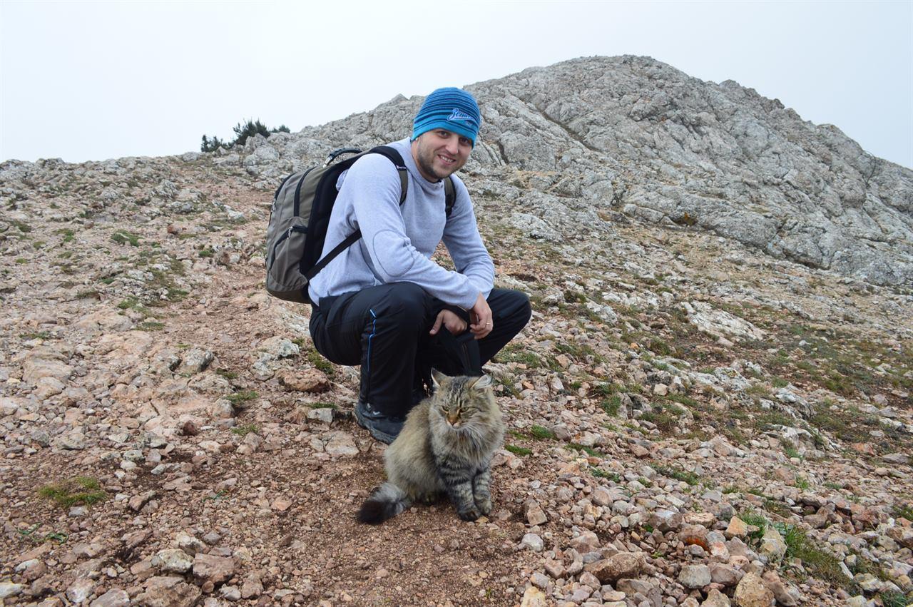 Кот в путешествии в горах