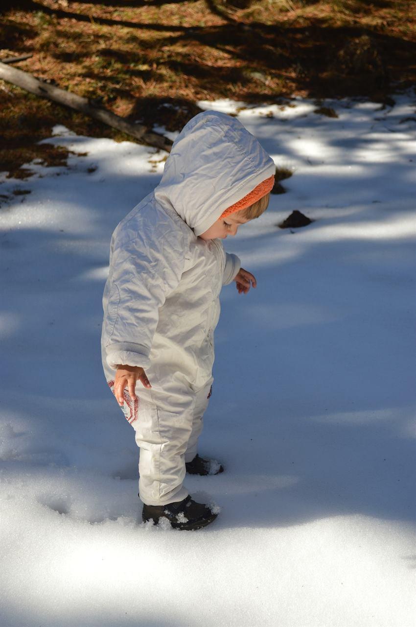Маленький ребенок в лесу в походе