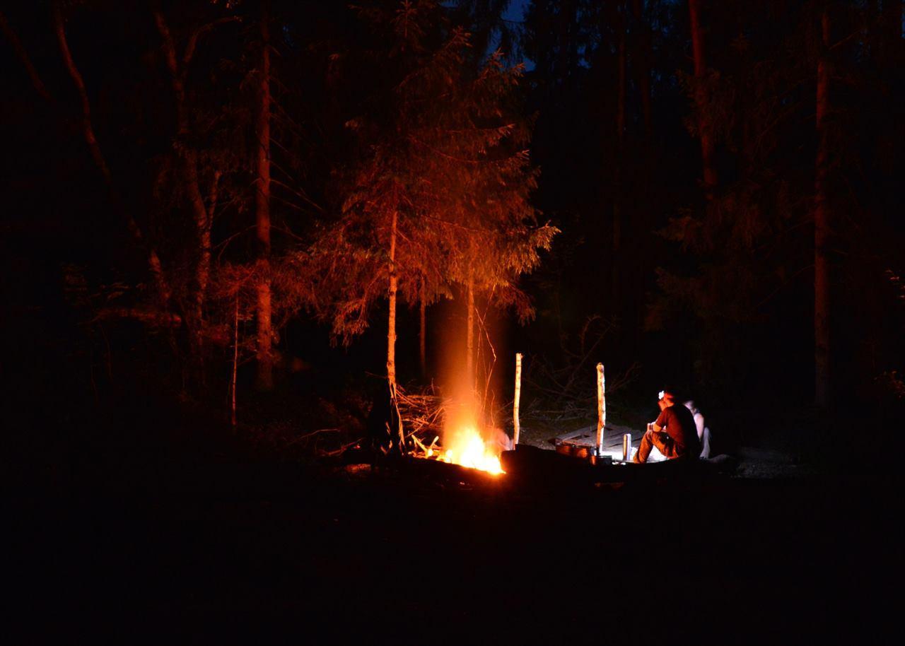 Ночной лагерь туристов в лесу