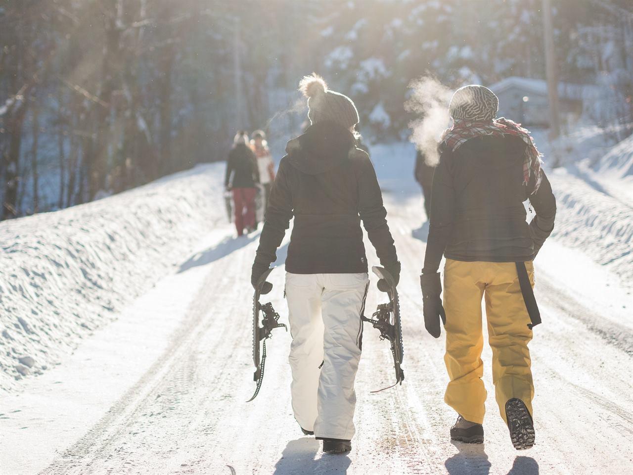 Путешествия зимой со снегоступами