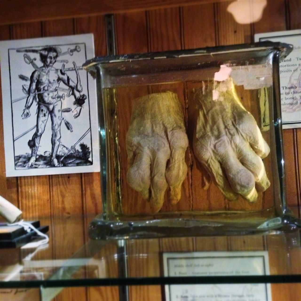 Музей дерматологии