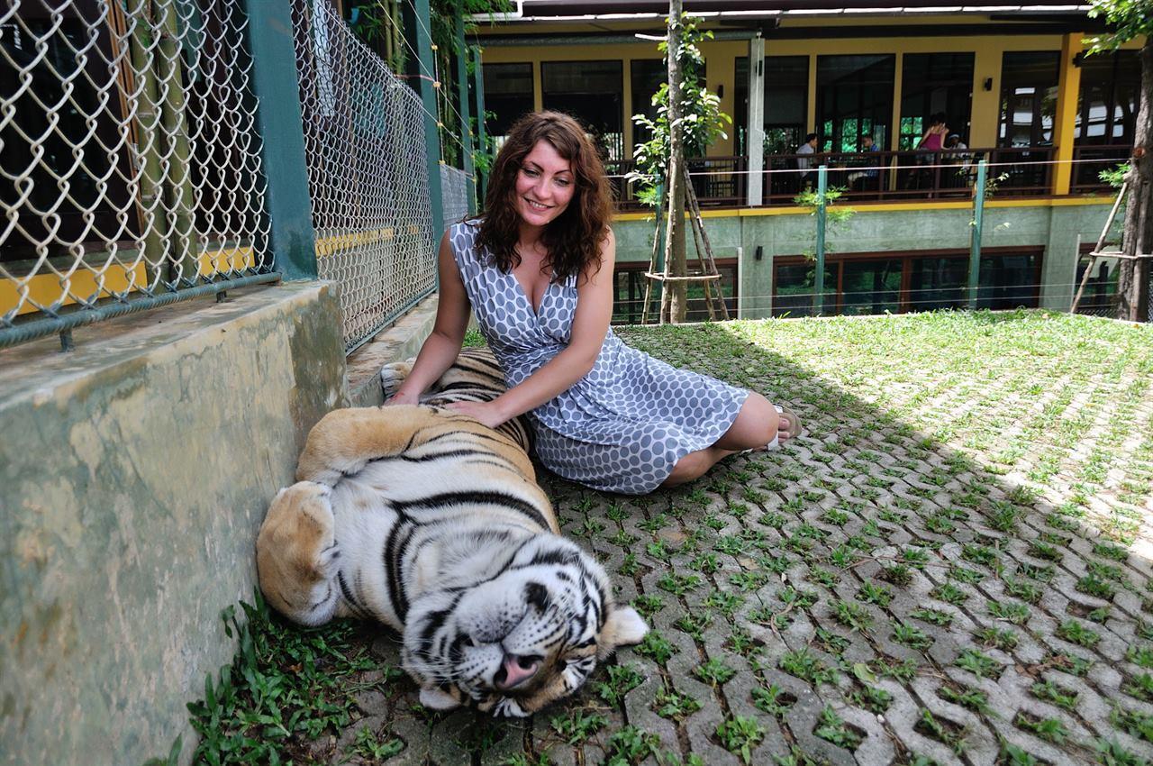 С тигром на Камчатке