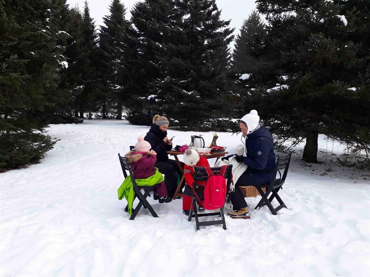 Семейных отдых в лесу на пикнике зимой