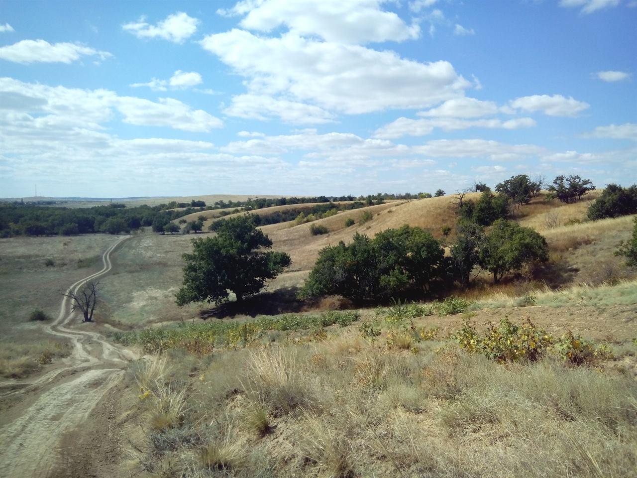 Волгоградская область природа
