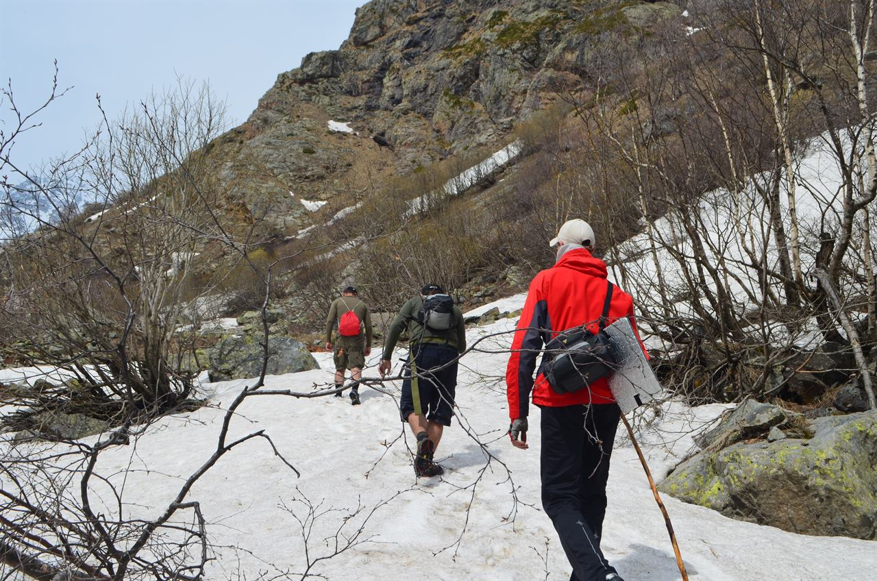 Трек в горы по снегу