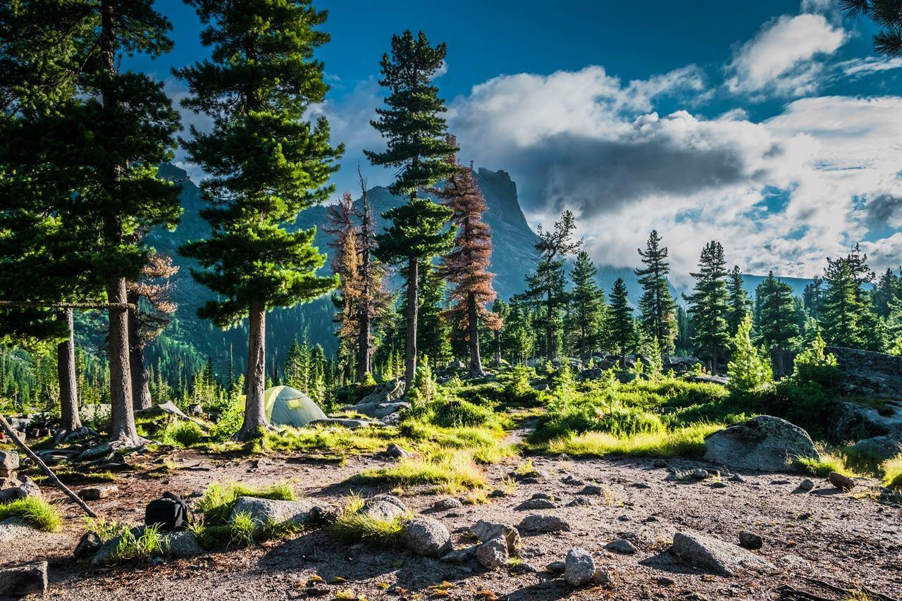 Палатка с туристами в лесу на Северном Урале