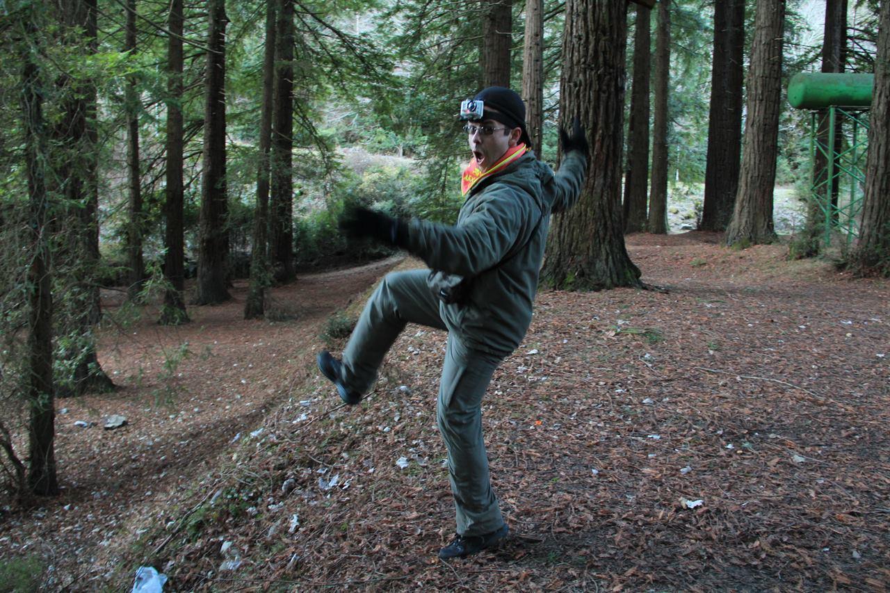 Приключения путешественника в лесу