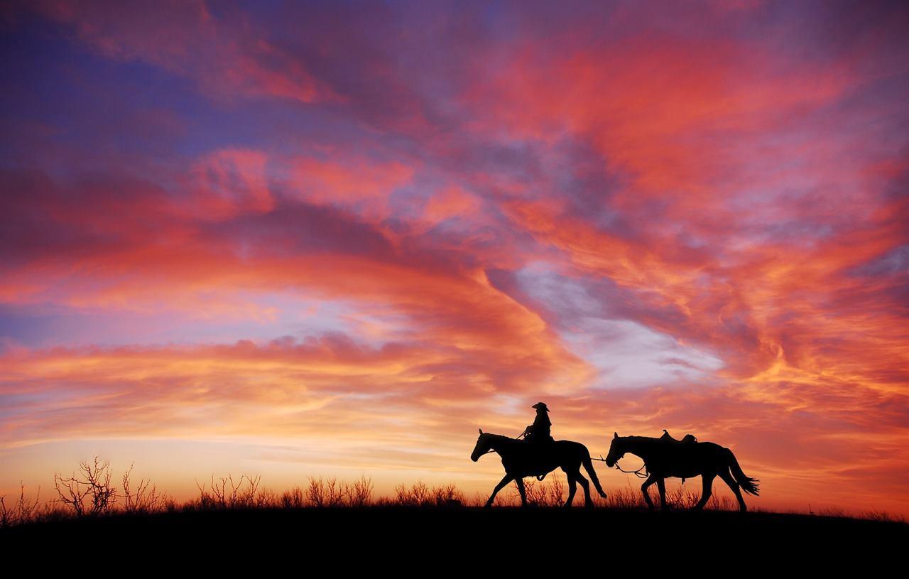 Путешественник и кони в закате