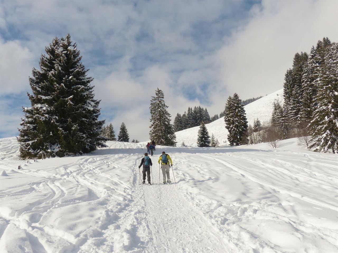 Туристический поход зимой с друзьями в лес