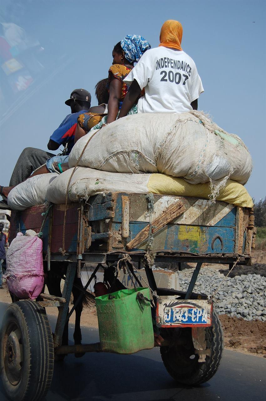Путешествие в Сенегал