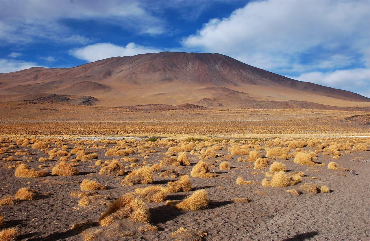 Удивительная природа Боливии лагуны Колорадо