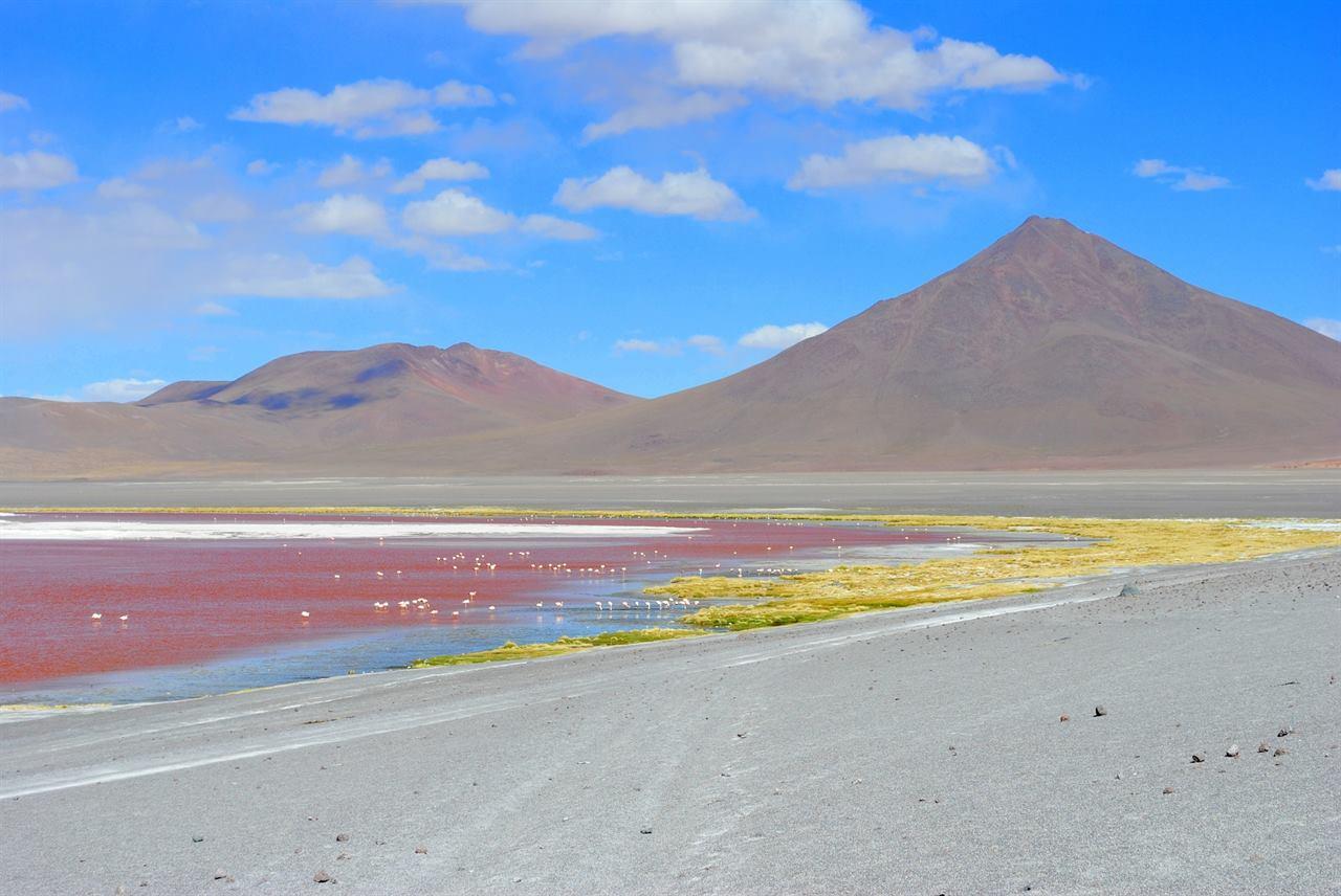 Красная лагуна Колорадо Боливия