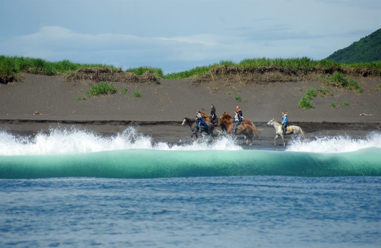 Конные прогулки и туризм на лошодях
