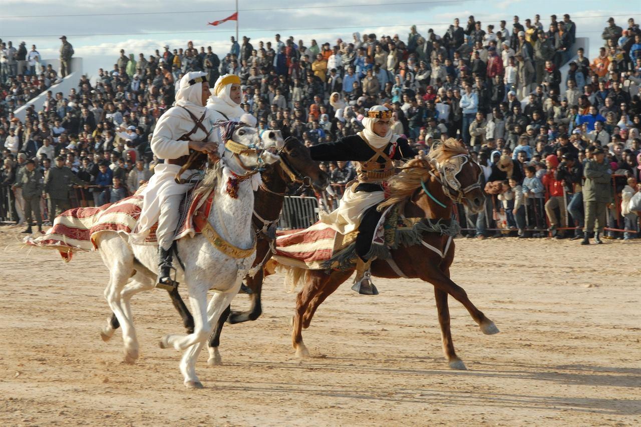 Тунис лошадиные скачки