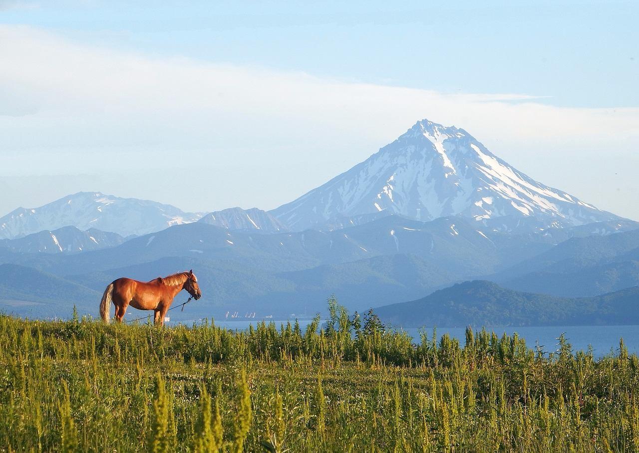 Путешествие на лошади к вулкану