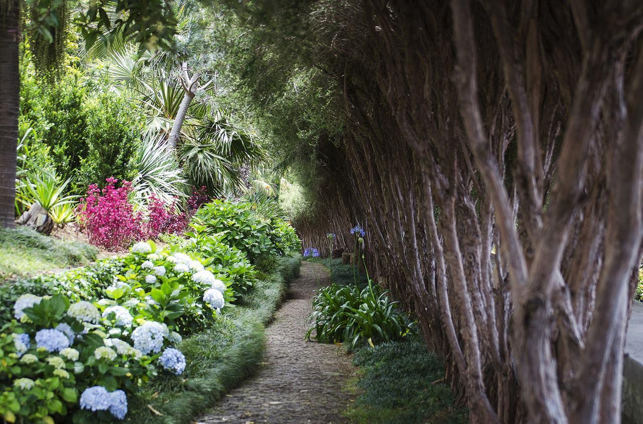 Тропический сад Монте Португалия