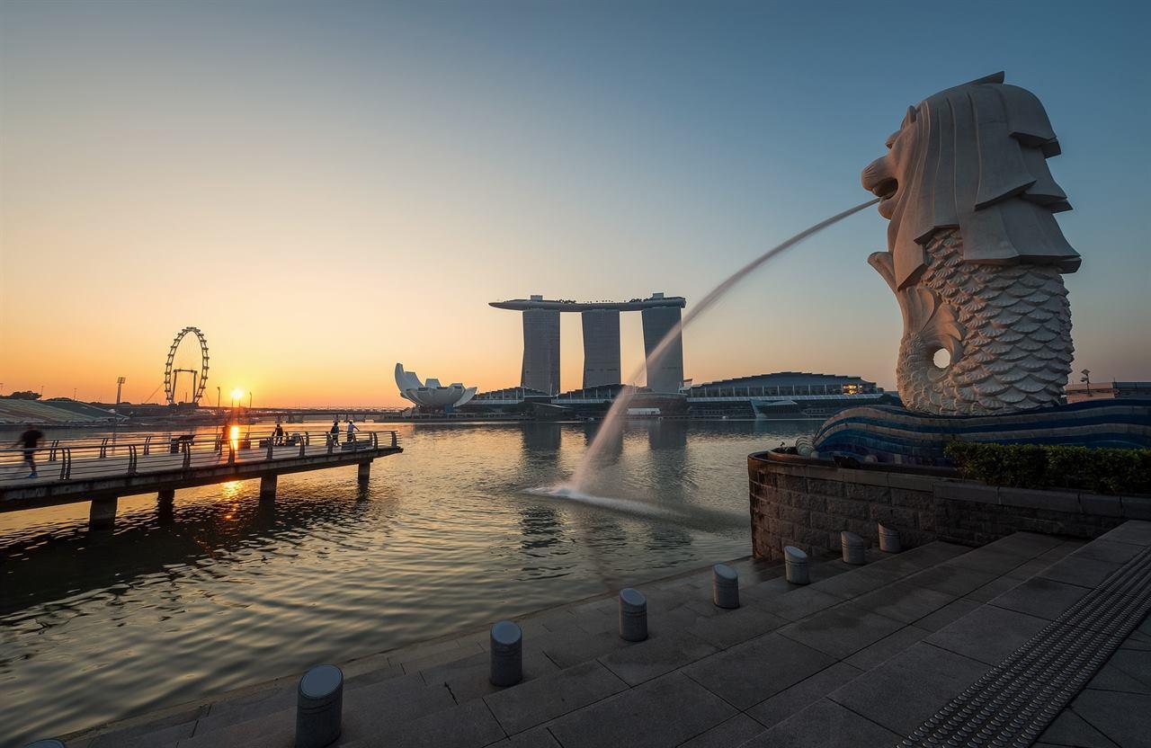 Сингапур, морской лев